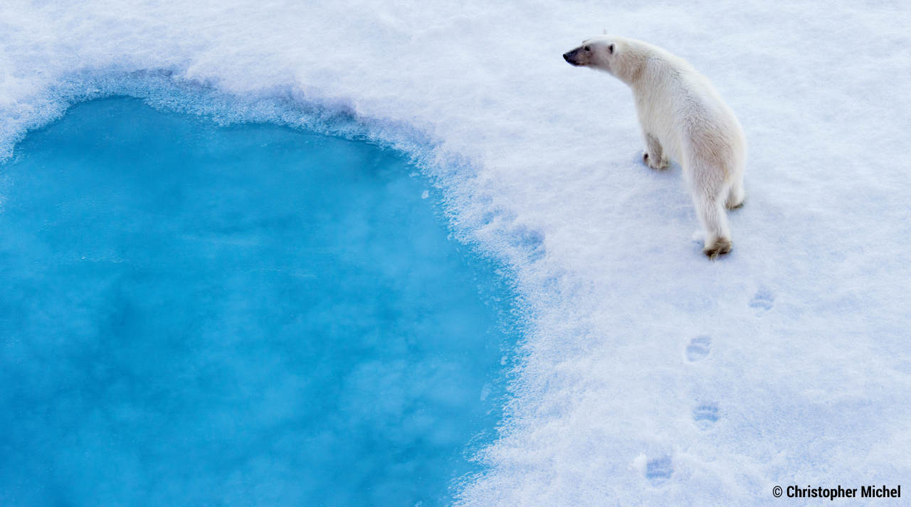 Breitling und Ocean Conservancy: Gemeinsam für einen sauberen Ozean